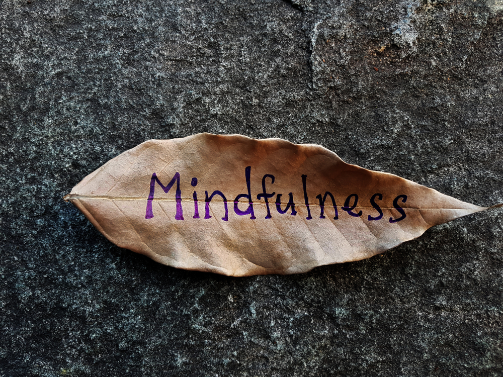 Leaf with the word mindfulness on it